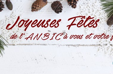 Holiday Facebook Main Tile Fr